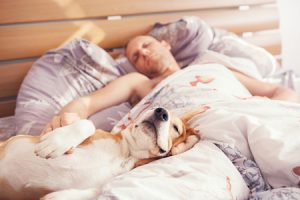 low testosterone man on bed with dog